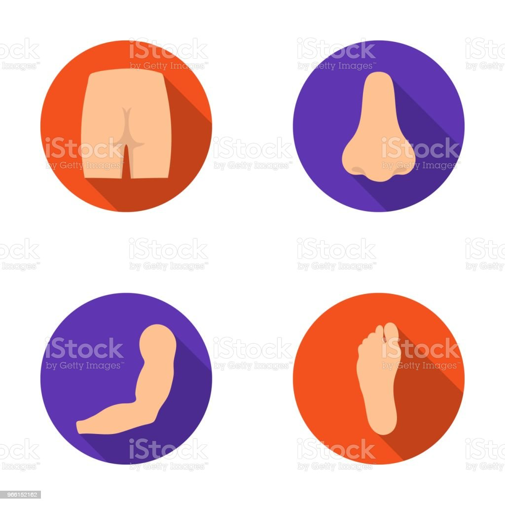 Buttocks, nose, arm, foot. Part of the body set collection icons in flat style vector symbol stock illustration web. - Royalty-free Anatomy stock vector