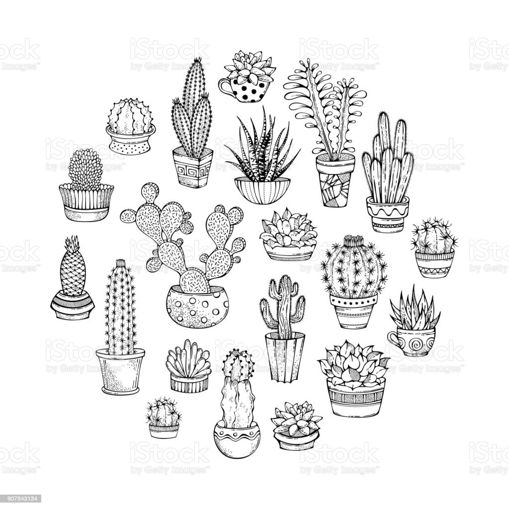 Cacti And Succulents Round Doodles Illustration Stock Vector Art ...