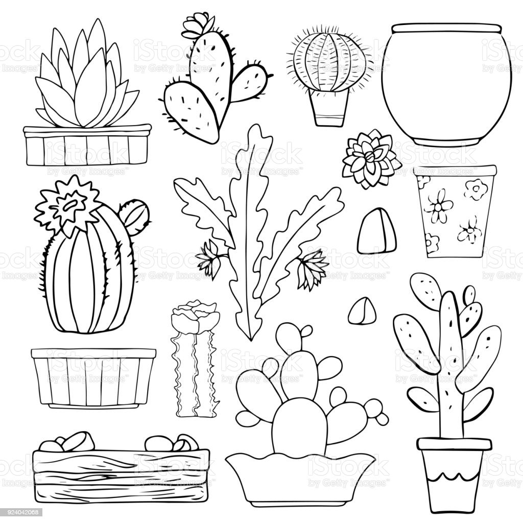 Cacti, flowerpots, stones vector art illustration