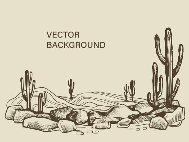 kakteen in der wüstenskizze von arizona - wüste stock-grafiken, -clipart, -cartoons und -symbole