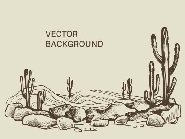 Cacti in the Arizona desert sketch Cacti in the Arizona. Hand drawn vector sketch of the desert of South America prairie landscape. desert stock illustrations