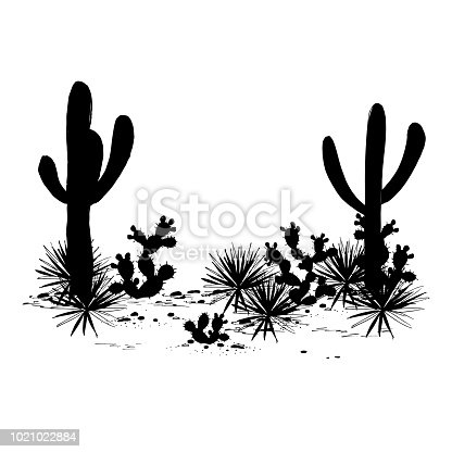 Cacti landscape. Vector silhouettes of, saguaro, prickly pear, and agave. Black and white banner, place for text. Mexican background