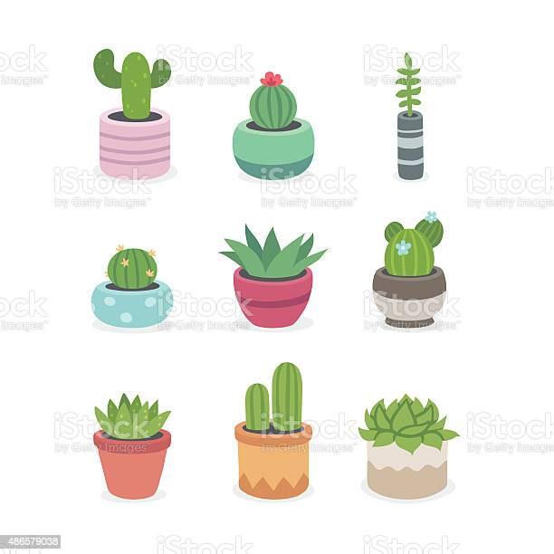 Cactus and succulent plants in pots vector id486579038?b=1&k=6&m=486579038&s=612x612&h= j2mmu32 qda58nzlmc2bxxj3 9i58xqow rjtdoxn0=