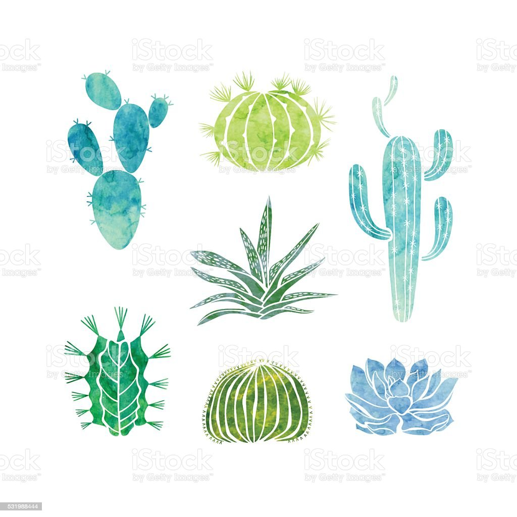Cactus and succulents isolated on white background. Vector watercolor  illustration. vector art illustration