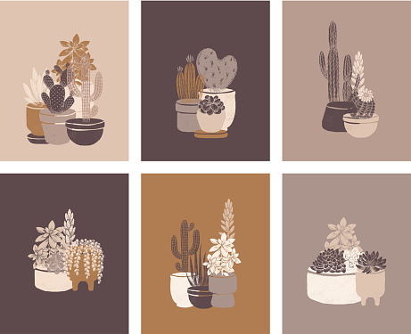Cactus cards vintage collection. Succulent art print set. Vintage hand drawn style. Vector illustration