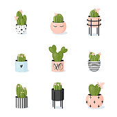 Cactus collection. Potted blooming cacti in cute stylish modern flowerpots. Vector illustration in cartoon style in soft pastel colors on white background. Design element for various purposes
