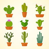 Cactus decorative home plant in pots flat vector icons. Cactus flora flower, flowerpot green and houseplant illustration
