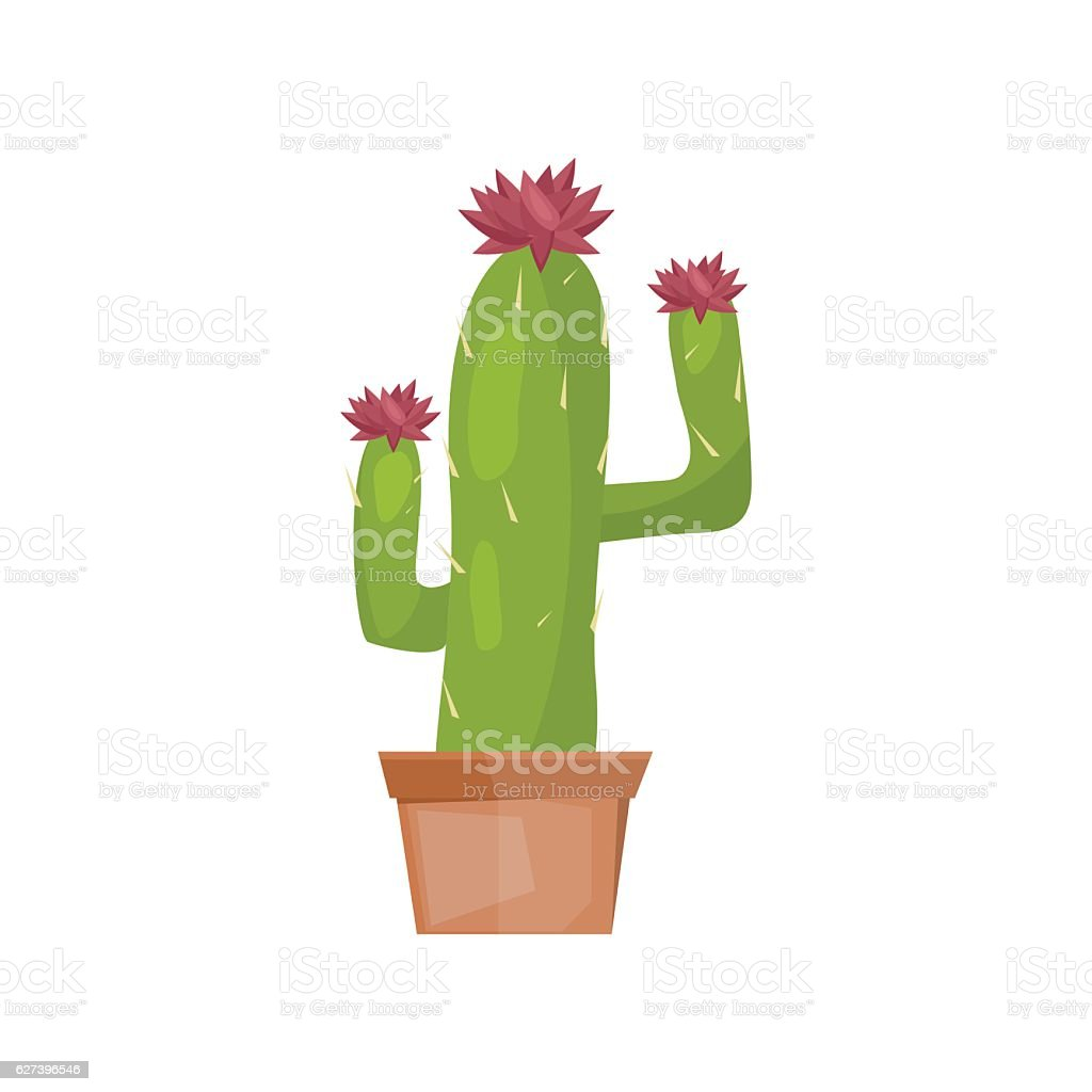 Cactus desert plant vector. vector art illustration
