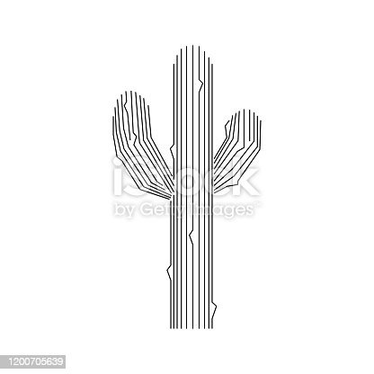 Spiny cactus design. Black lines isolated on white background. Vector illustration