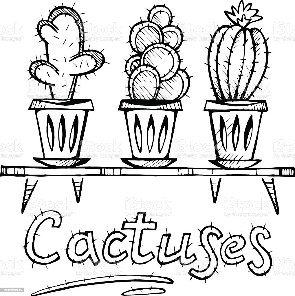 house plants drawing. cactus doodle set sketch of house plants royaltyfree stock vector art drawing w