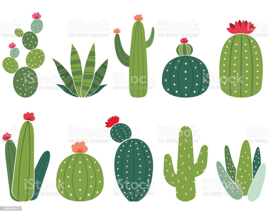 Cactus Elements Set vector art illustration