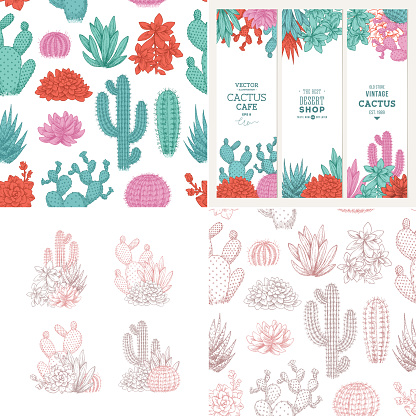 Cactus fun design kit. Sketchy style illustration. Banners, compositions, pattern. Succulent collection. Vector illustration