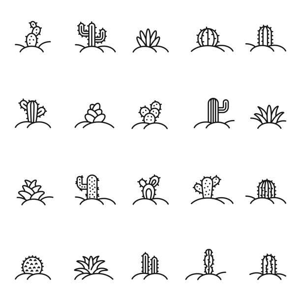 stockillustraties, clipart, cartoons en iconen met cactus pictogramserie - cactus