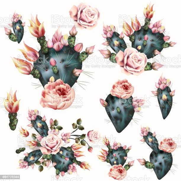 Cactus illustration with pink flowers realistic botanical background vector id694725344?b=1&k=6&m=694725344&s=612x612&h=jh82q eazfiwmqvorcom6o3bzjmvkw  c djdesft u=