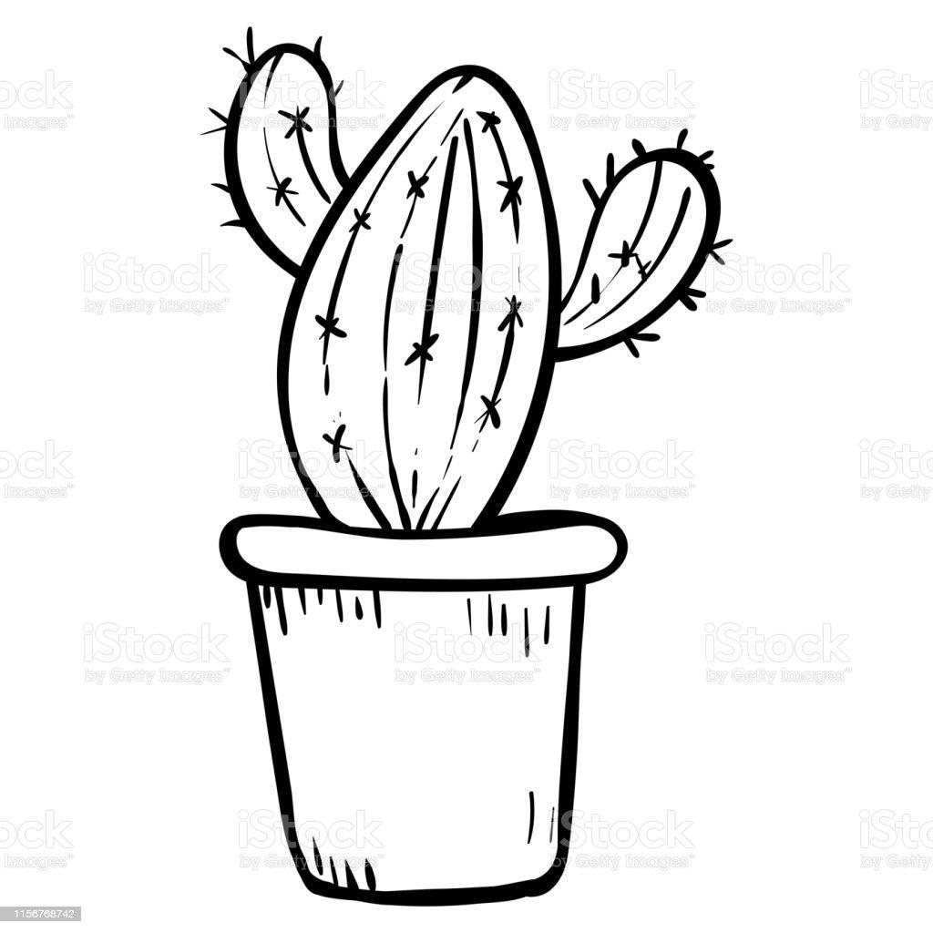 Ilustración De Cactus En Una Maceta Ilustración Botánica