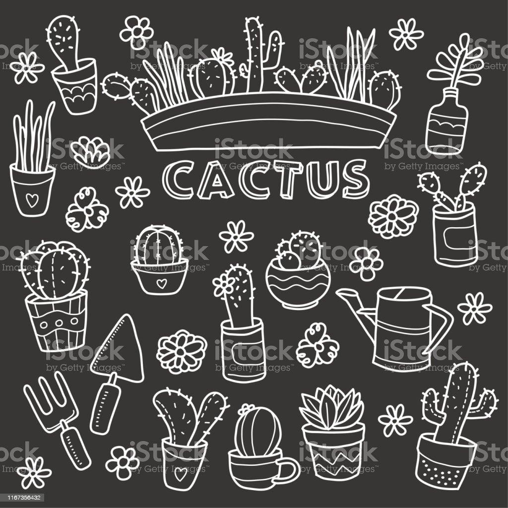 Cactus Plants Chalkboard Doodle Vector Illustration Stock Illustration Download Image Now Istock