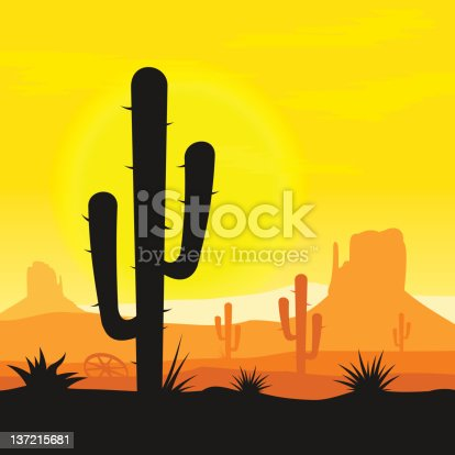 Sunset in mexican desert with cactus plants silhouette. Vector EPS version 10 with transparency effects.