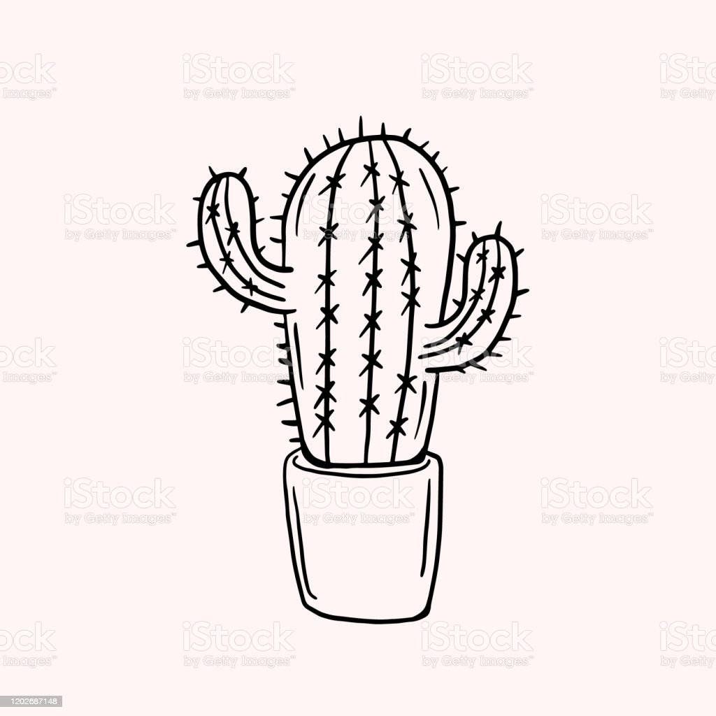 Cactus Simple Vector Drawing Line Drawing Hand Drawn Illustration Stock Illustration Download Image Now Istock
