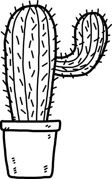 Royalty Free Black And White Cactus Clip Art Vector Images
