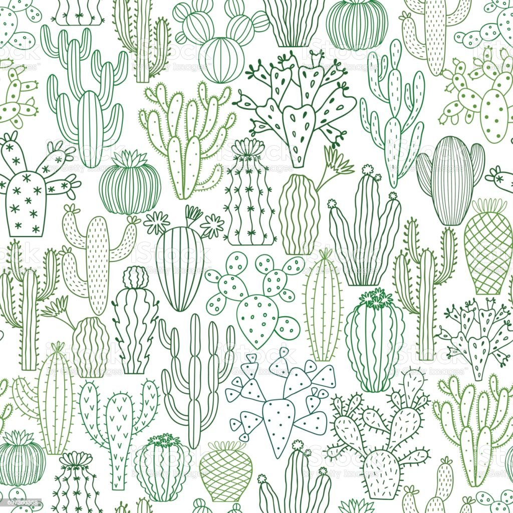 Cactus vector illustrations. Hand drawn cactus plants set vector art illustration