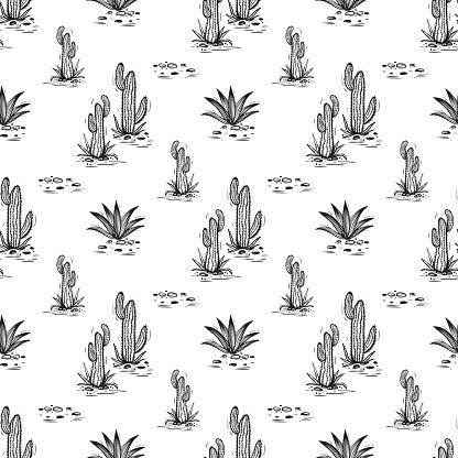 Cactus Vector Seamless pattern. Nature. Hand drawn doodle cacti. Desert Floral background