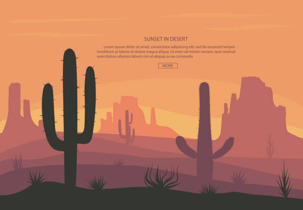 Cactuse and mountains in desert landscape, sunset in cannon, Background scene with stones and sand vector art illustration