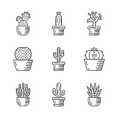 Cactuses in pots linear icons set