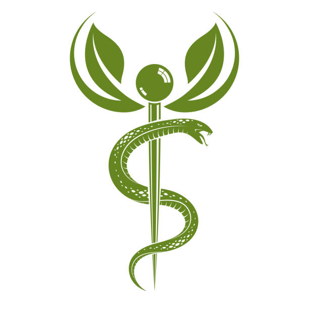 illustrazioni stock, clip art, cartoni animati e icone di tendenza di caduceus medical symbol, graphic vector emblem for use in healthcare. phytotherapy metaphor. - ancient medical symbol