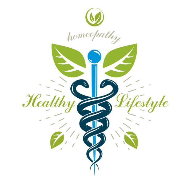 illustrazioni stock, clip art, cartoni animati e icone di tendenza di caduceus vector conceptual emblem created with snakes and green leaves. wellness and harmony metaphor. alternative medicine concept, phytotherapy sign. - ancient medical symbol