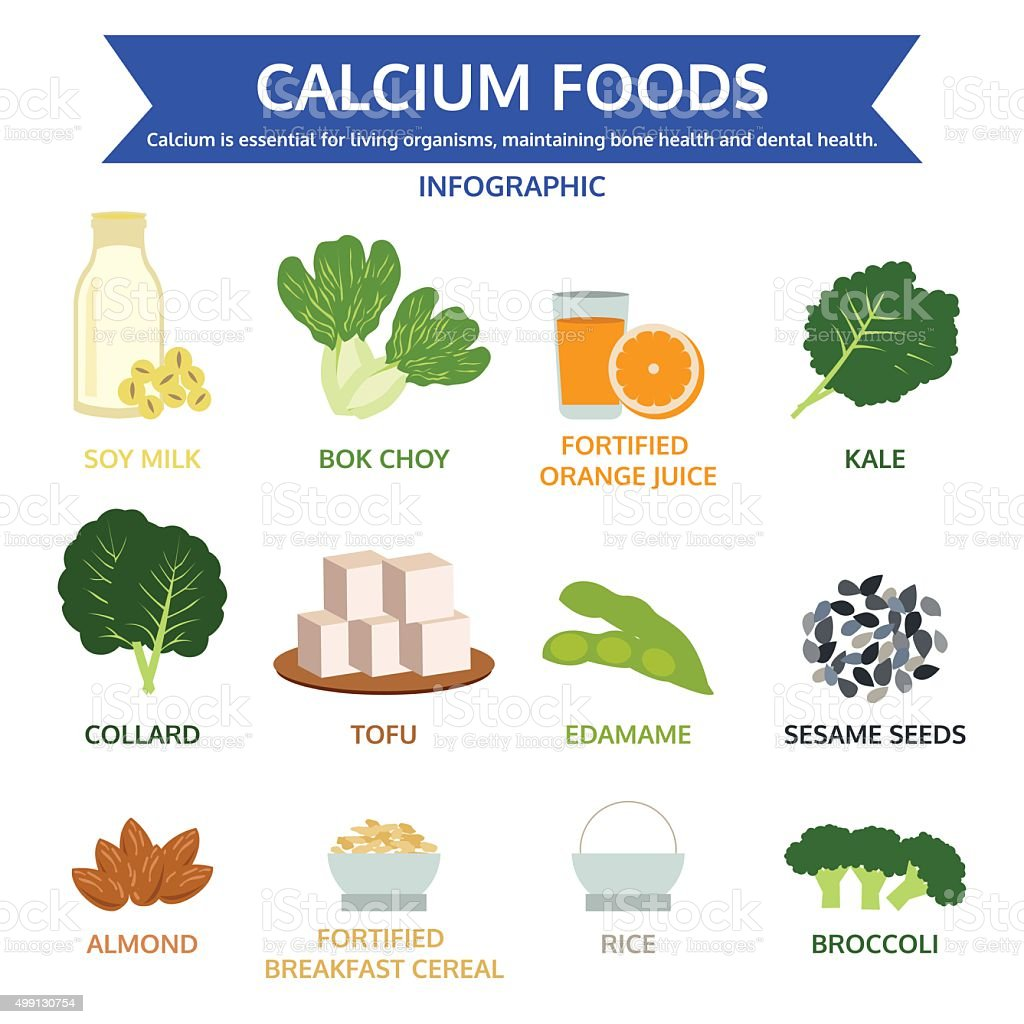 calcium foods, food info graphic, icon vector vector art illustration