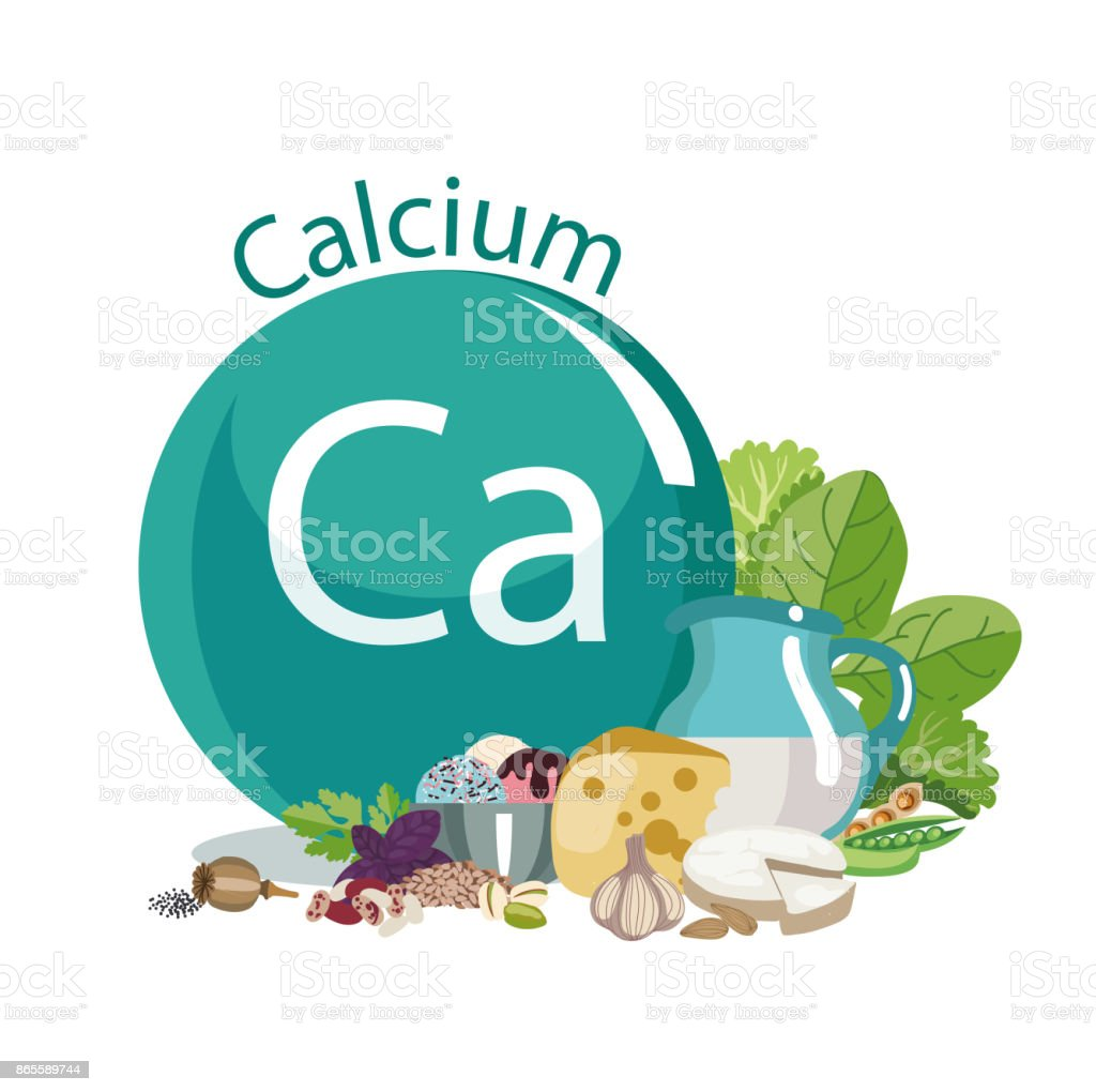 Calcium in food vector art illustration