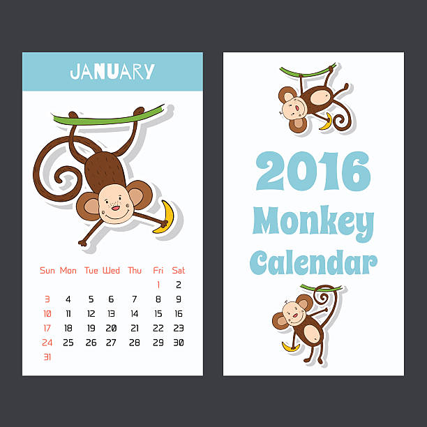 calendar with a monkey for 2016. the month of january. - wildlife calendar stock illustrations, clip art, cartoons, & icons