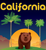 Vector California and Bear