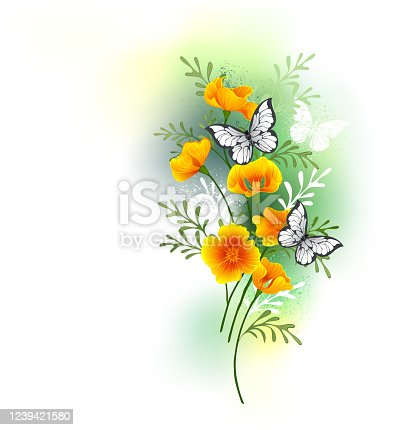 Artistically painted, small bouquet of orange Caliphony poppy flowers with white butterflies sitting on them against white background stained with green paint.
