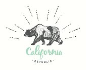 California Republic emblem drawn vector sketch