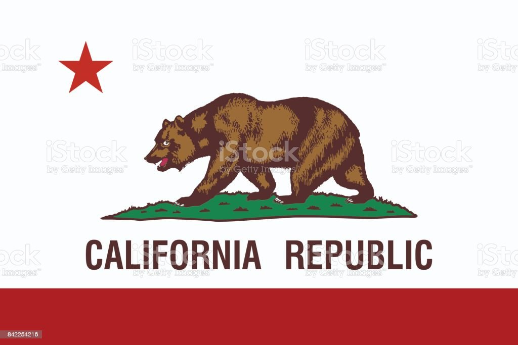 California State Flag. vector art illustration