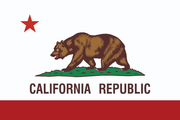 california state flag. - bear stock illustrations, clip art, cartoons, & icons
