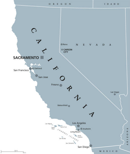 California United States political map California political map with capital Sacramento, the largest cities and borders. State in the Pacific Region of the United States. The Golden State. Gray illustration on white background. Vector. california map stock illustrations