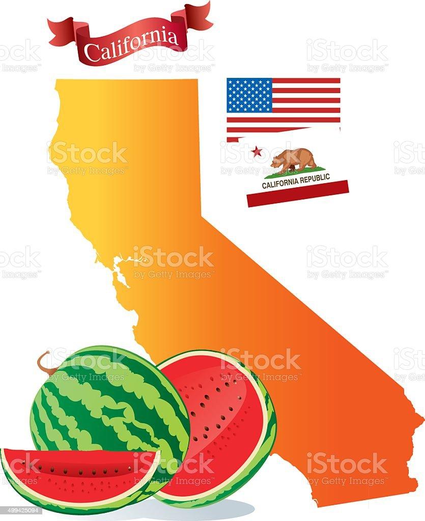 California Watermelon vector art illustration