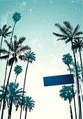 Retro grange palm trees on a sky background.