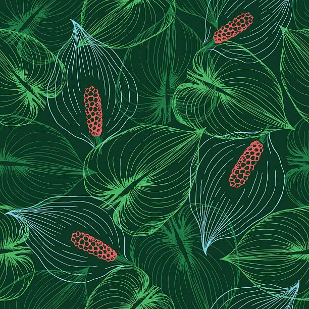 Calla fleurs motif uniforme. - Illustration vectorielle