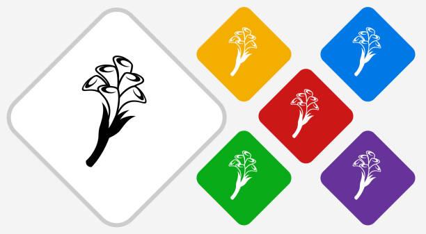 Calla lily fleurs couleur diamant Vector Icon - Illustration vectorielle
