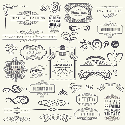 Calligraphic Design Elements and Frames. Vintage Collection. Vector