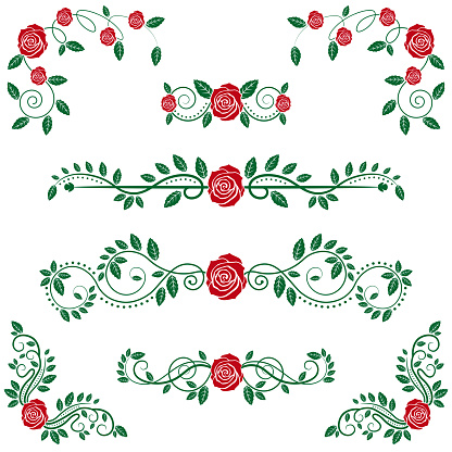 Calligraphic Floral Scroll and Roses