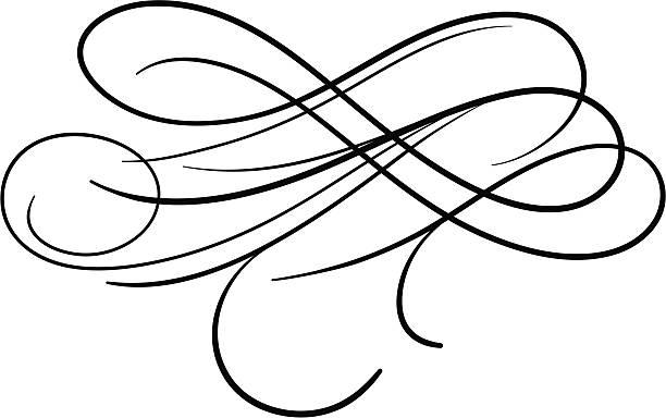 Calligraphic Swashes vector art illustration