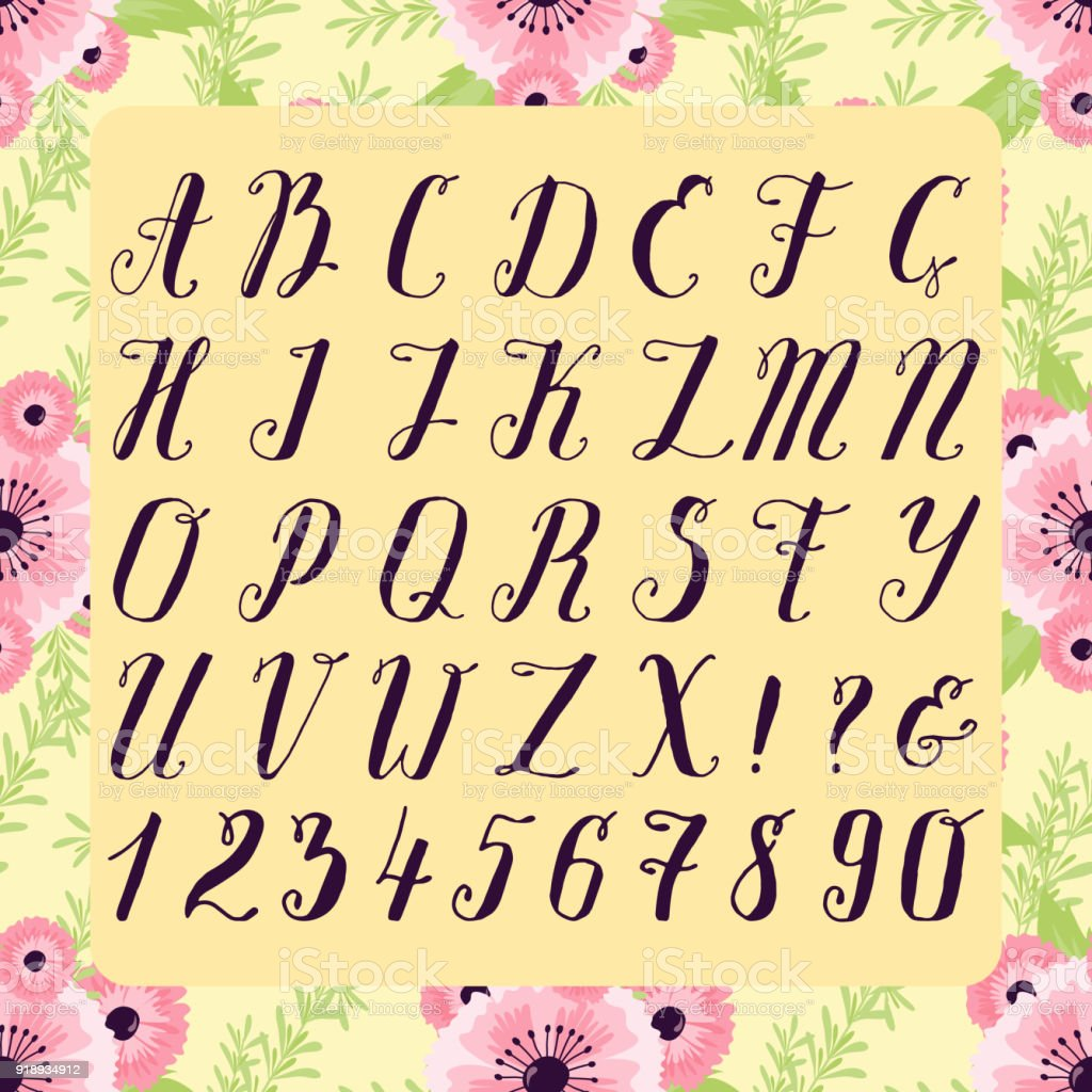 Calligraphic Vector Font With Floral Nature Numbers Ampersand And