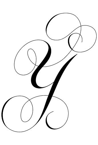 Calligraphy Alphabet Letter Y Stock Illustration