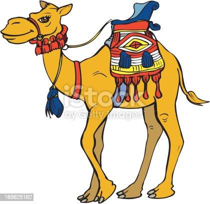 istock Camel Cartoon 165625162