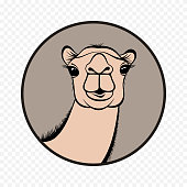 Camel face front view vector illustration in circle can be used for icon, logo and symbol