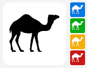 Camel Icon. This 100% royalty free vector illustration features the main icon pictured in black inside a white square. The alternative color options in blue, green, yellow and red are on the right of the icon and are arranged in a vertical column.